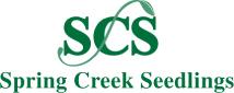 Spring_Creek_Seedling_logo